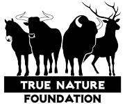 True nature foundation