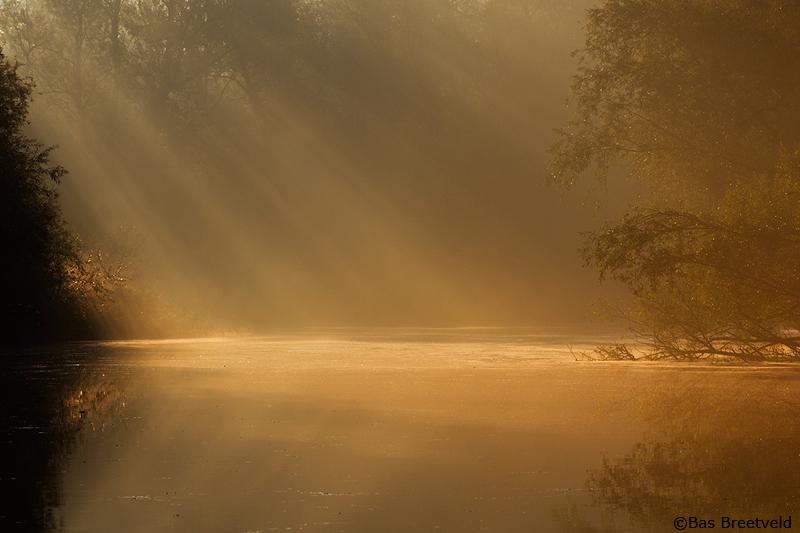 zonneharp biesbosch