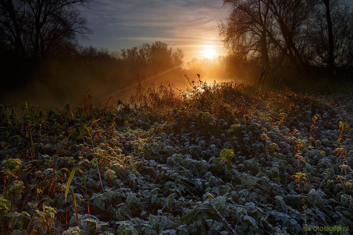 zonsopgang in de Biebsoch