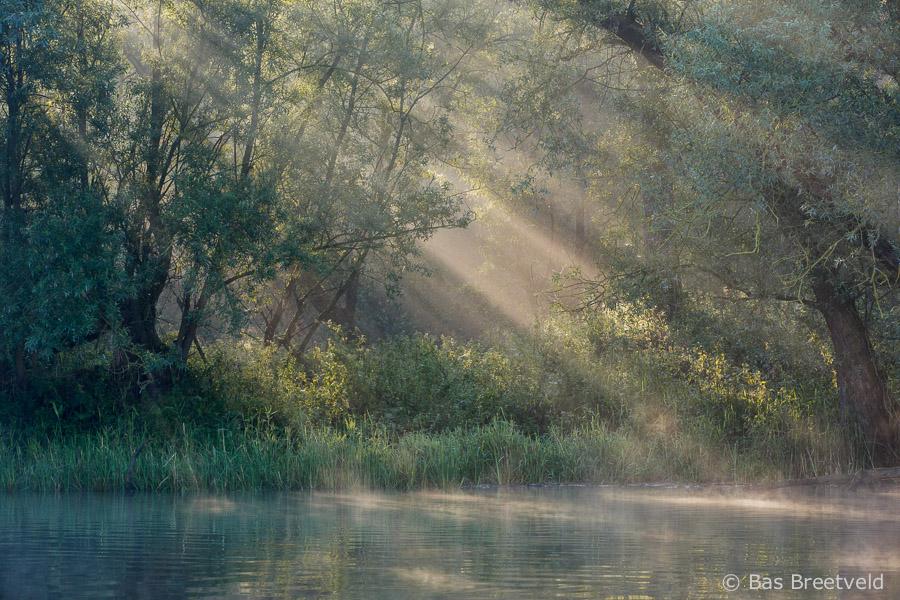 zonneharpen Biesbosch