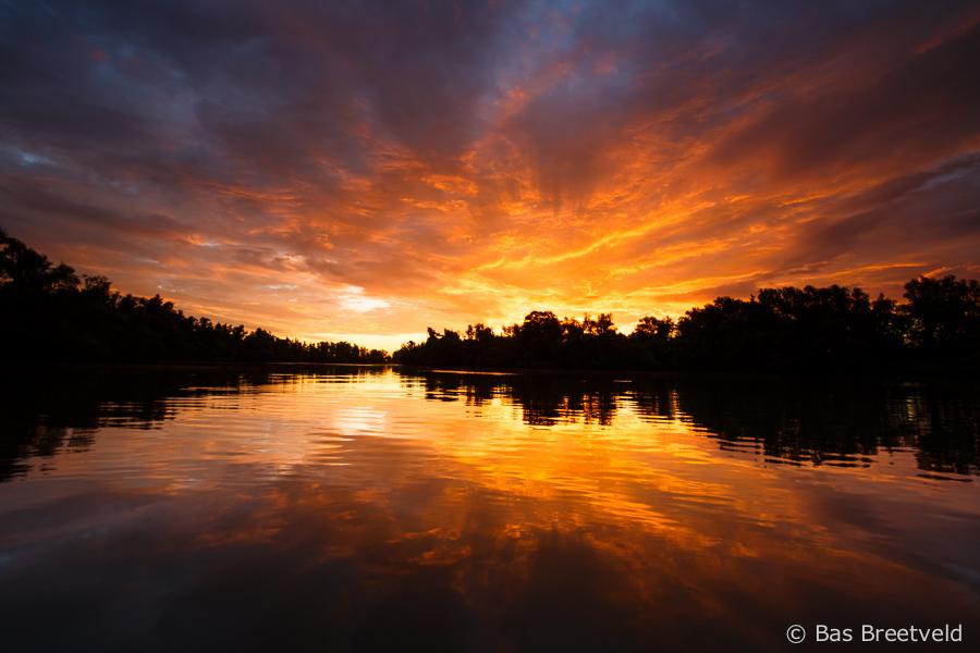 zonsopkomst in de Biesbosch