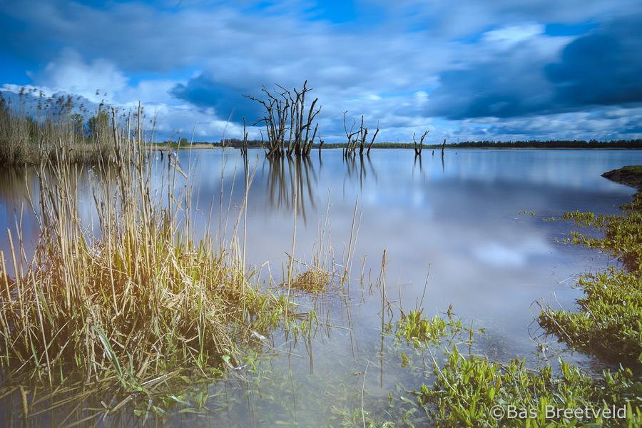 Biesbosch landschap Zuiderklip
