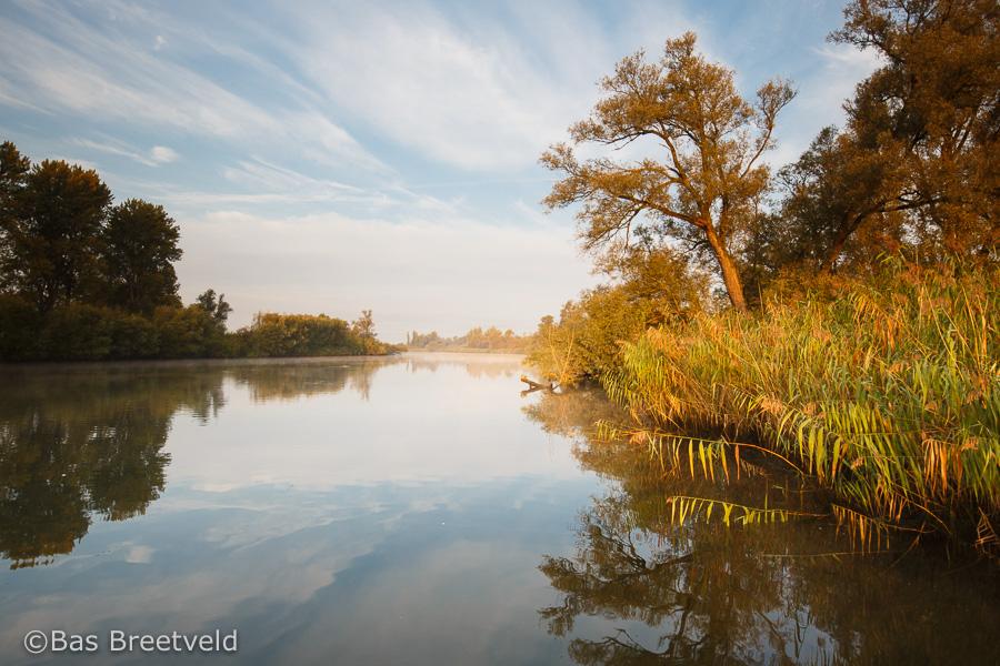 zonsopkomst biesbosch