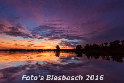 Biesbosch foto's 2016