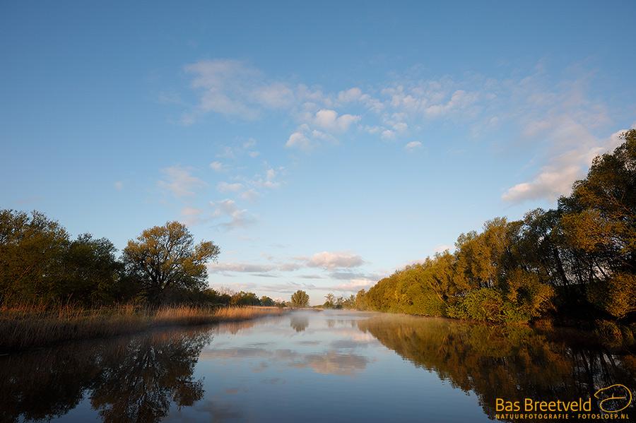 Biesbosch landschap in ochtendlicht