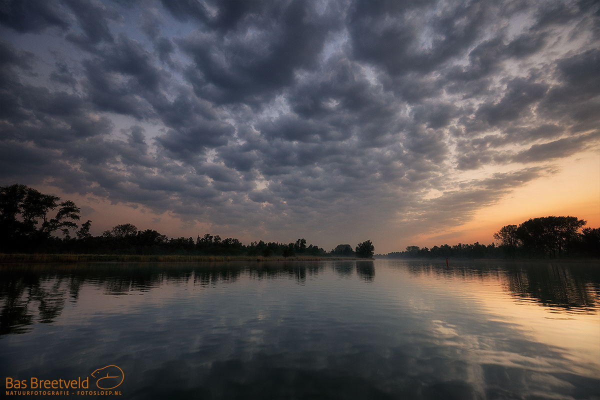 2795 | Biesbosch | Canon 5D Mark IV | EF 16-35mm F/4.0L USM IS USM | ISO 400, F5.0, 1/20 Sec.