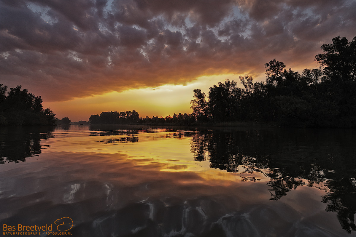 2525 | Biesbosch | Canon 5D Mark IV | EF 16-35mm F/4.0L USM IS USM | ISO 400, F6.3, 1/40 Sec.