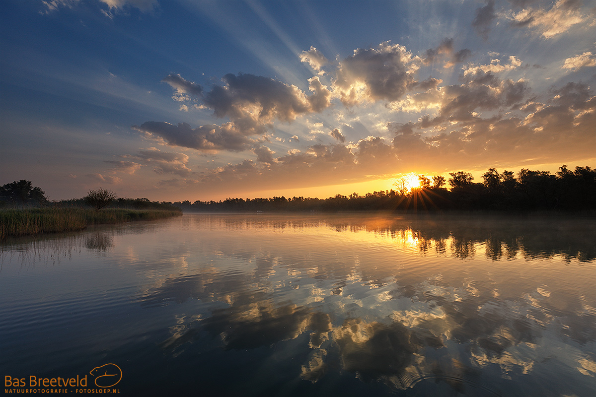 2984 | Biesbosch | Canon 5D Mark IV | EF 16-35mm F/4.0L USM IS USM | ISO 200, F13.0, 1/40 Sec.