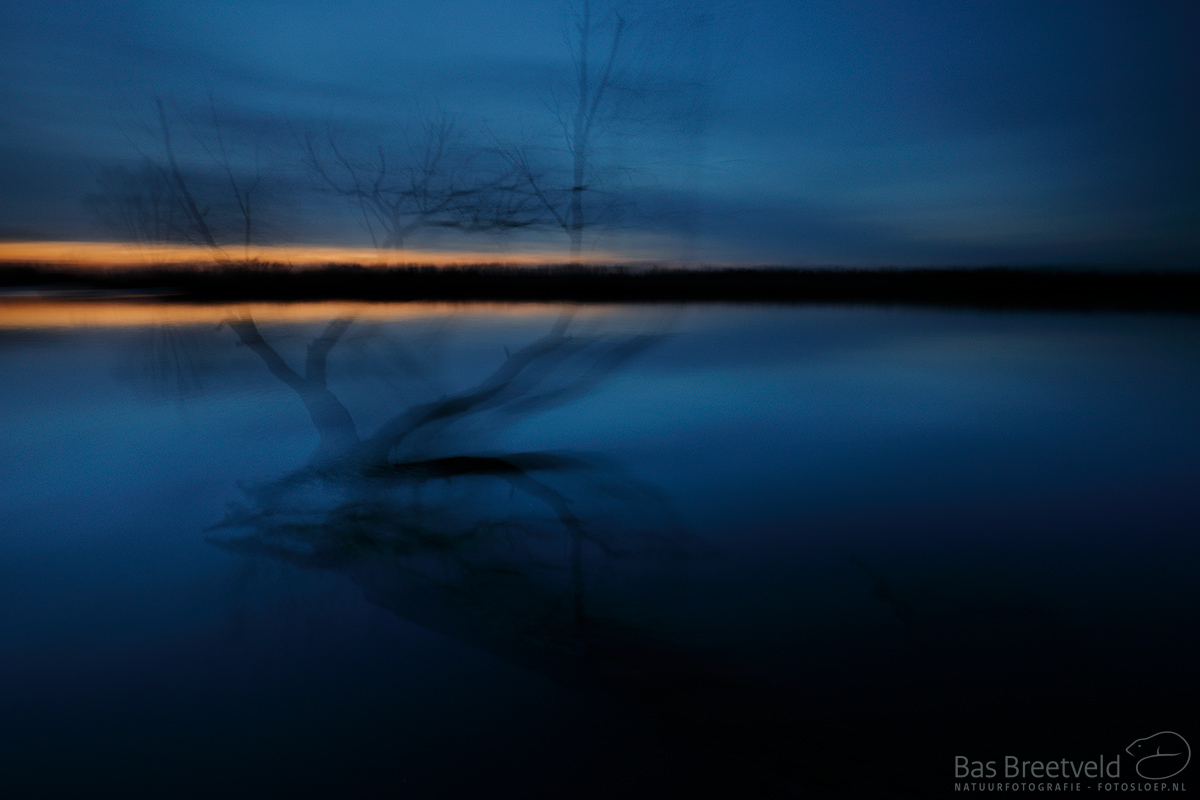 1368 | Biesbosch | Canon 5D Mark IV | EF 16-35mm F/4.0L USM IS USM | ISO 400, F10.0, 5 Sec.