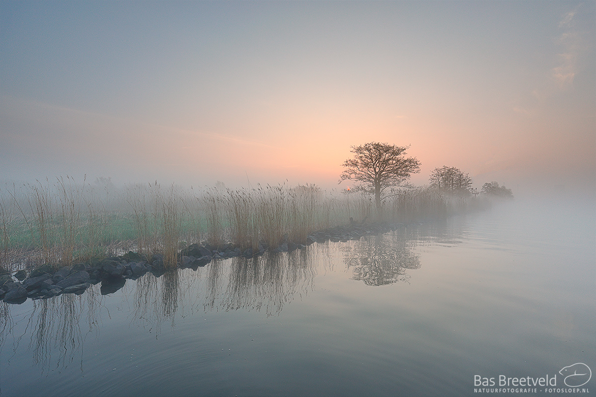1838 | Biesbosch | Canon 5D Mark IV | EF 16-35mm F/4.0L USM IS USM | ISO 400, F6.3, 1/80 Sec.