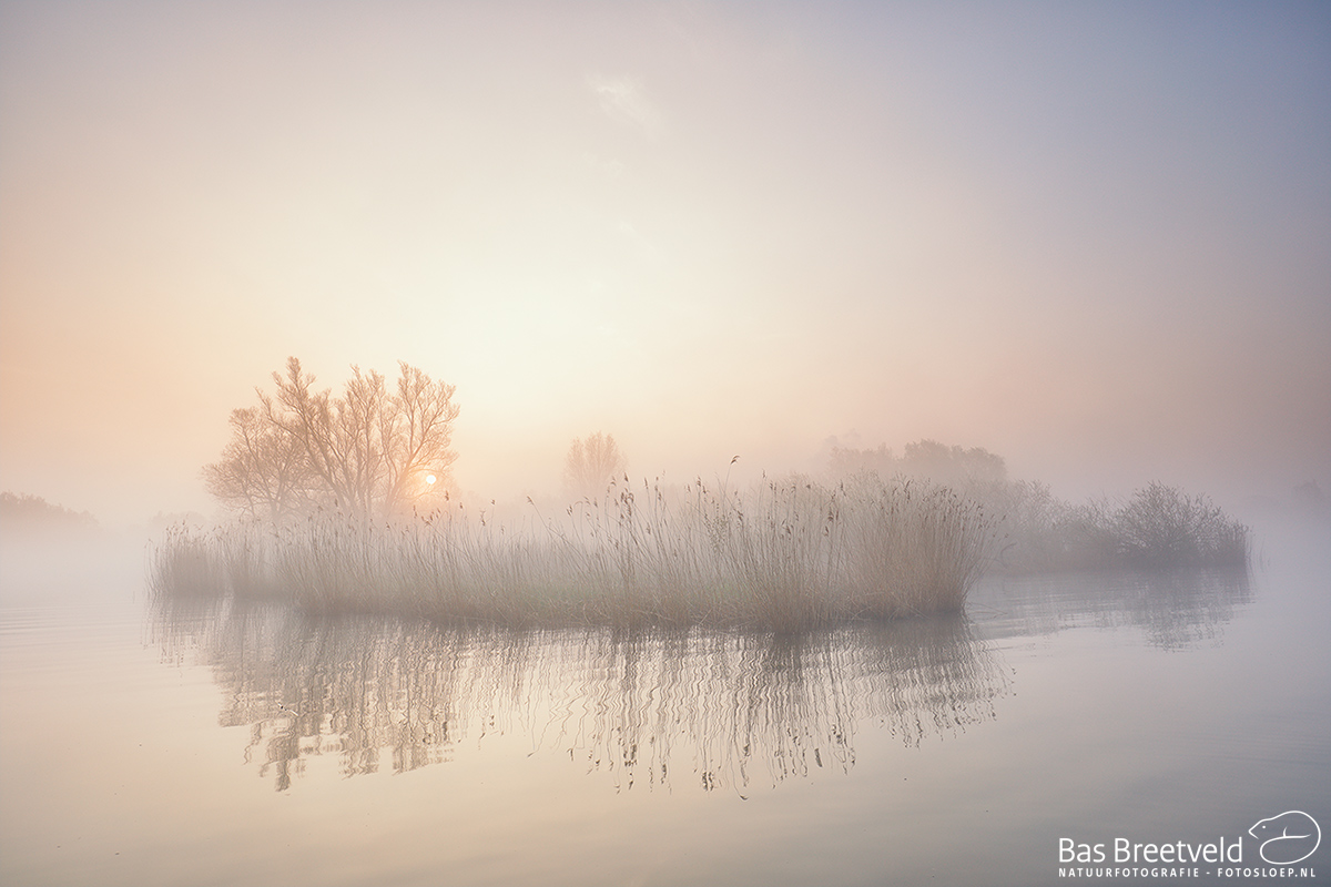 1940 | Biesbosch | Canon 5D Mark IV | EF 16-35mm F/4.0L USM IS USM | ISO 200, F6.3, 1/50 Sec.