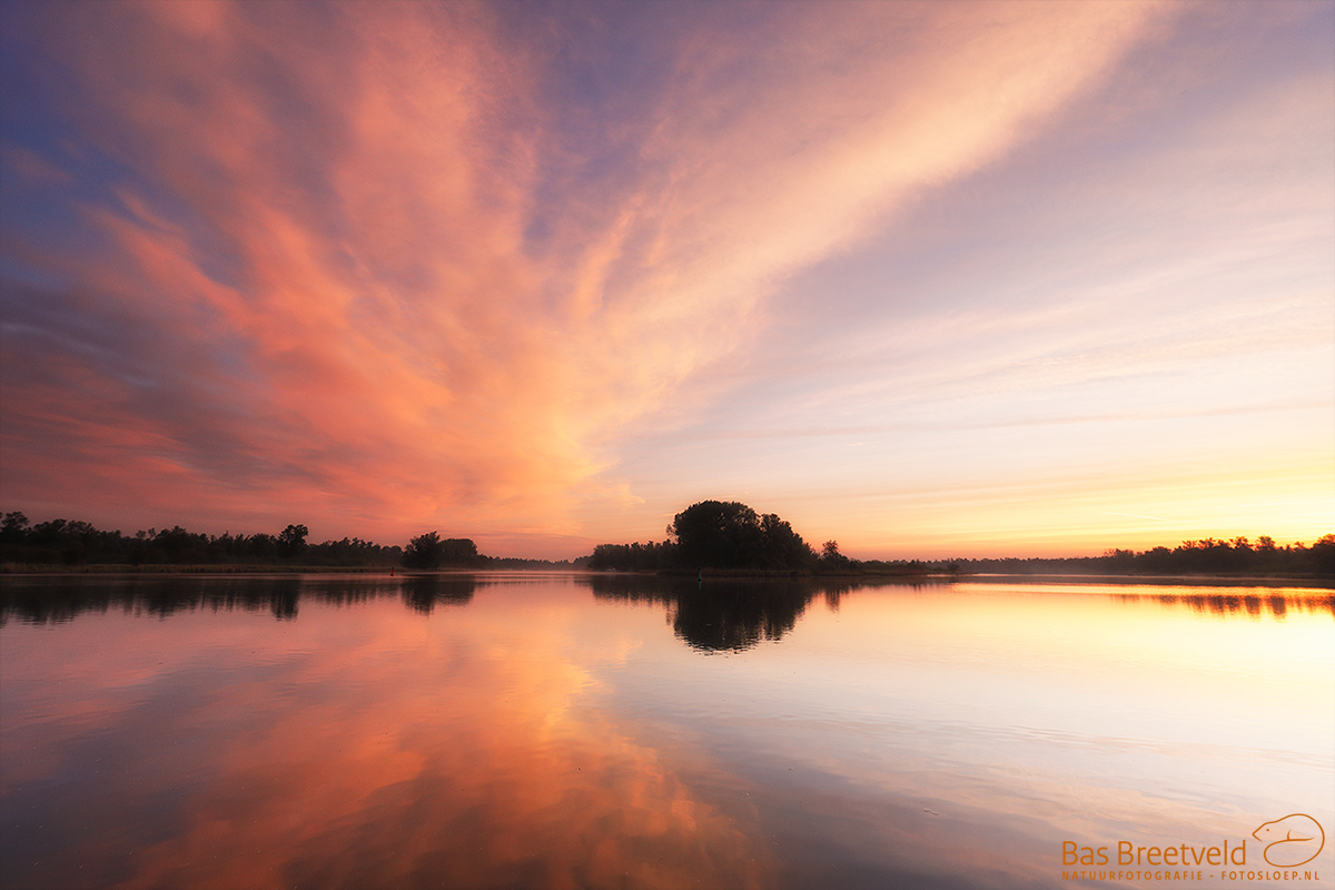 3096 | Biesbosch | Canon 5D Mark IV | EF 16-35mm F/4.0L USM IS USM | ISO 400, F5.6, 1/50 Sec.