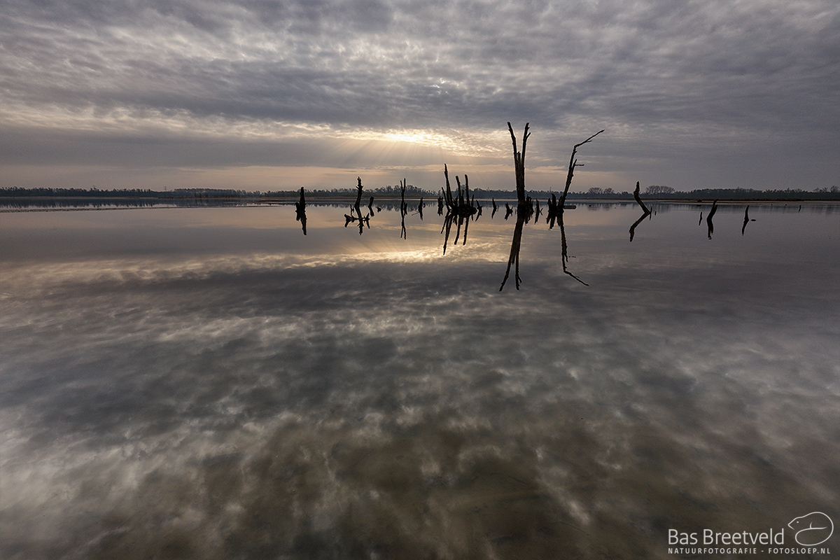 1411 | Biesbosch | Canon 5D Mark IV | EF 16-35mm F/4.0L USM IS USM | ISO 200, F13.0, 1/60 Sec.