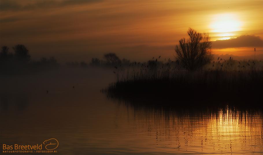 Fotografie Biesbosch 3