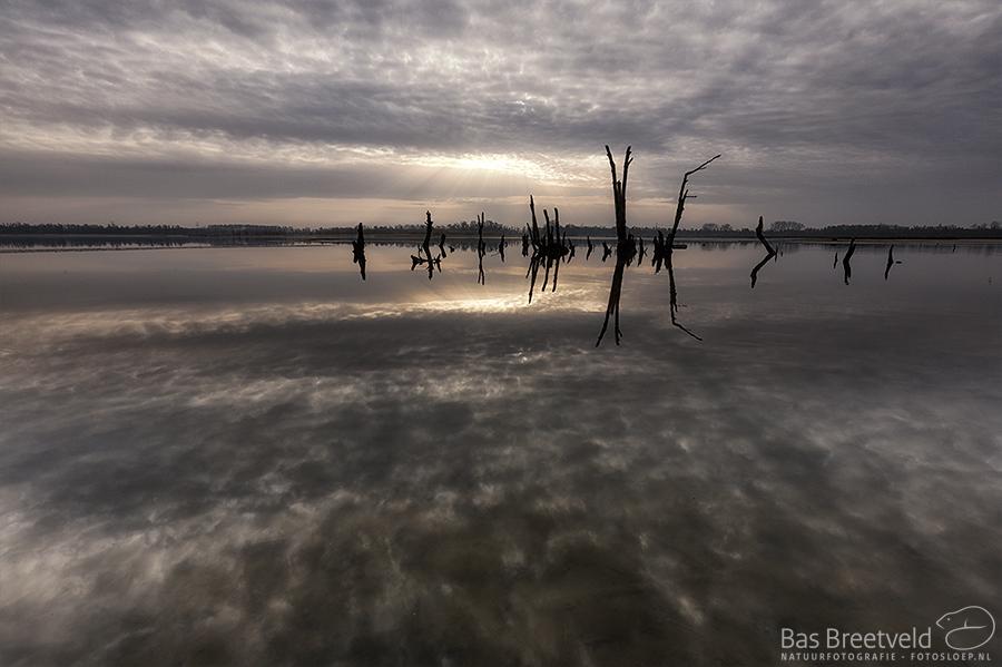 Biesbosch fotoworkshop zonsopkomst