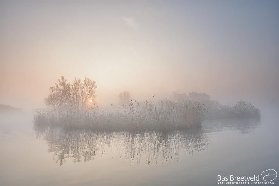 Fotografie Biesbosch 4