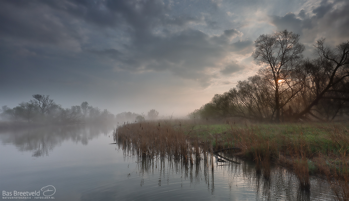 1655 | Biesbosch | Canon 5D Mark IV | EF 16-35mm F/4.0L USM IS USM | ISO 200, F9.0, 1/60 Sec.